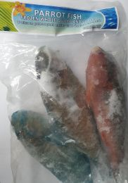 Parrot Fish Whole Gutted and Scaled 800g - Frozen