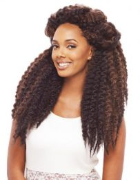 Janet Collection 2 X Havana Twist Braid 22""