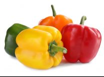 Fresh Mixed Capsicum (Single)