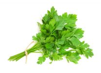 Fresh Parsley Class 1 - Spain (Bundle)